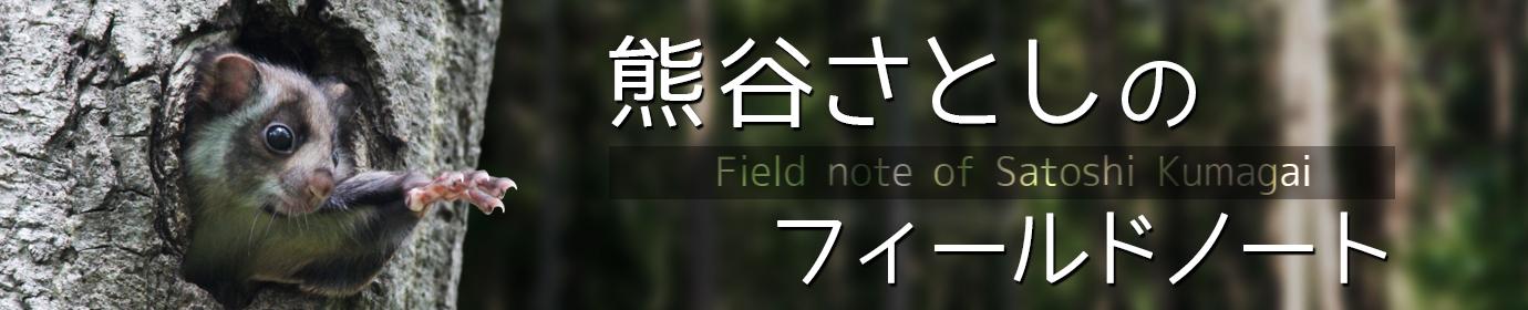 熊谷さとしのフィールドノート